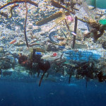 Inquinamento-marino